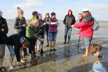 Eine Gruppe steht im Watt und bekommt etwas von dem Führer der Wanderung erklärt