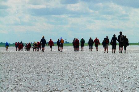 Eine Gruppe macht eine Wattwanderung auf Borkum
