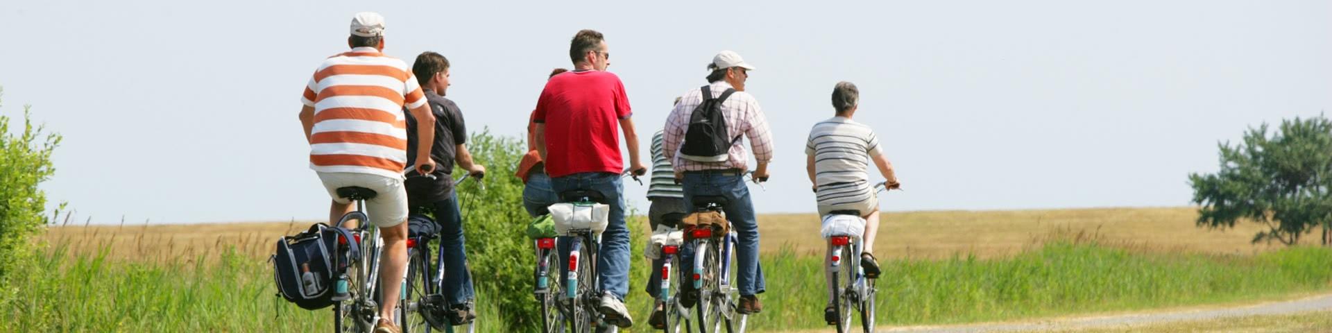 Gruppe macht Fahrradtour auf Borkum vorbei an Wiesen und Feldern