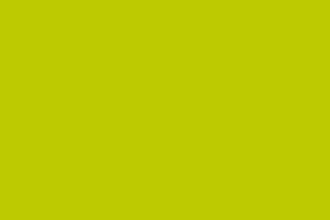 Farbe apfelgrün (Partyradeln)