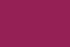 Farbe lila (Partyzug)
