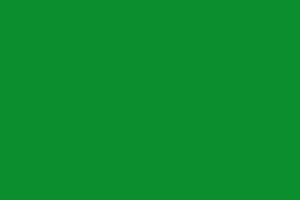 Farbe grün (Weihnachten & Winter)