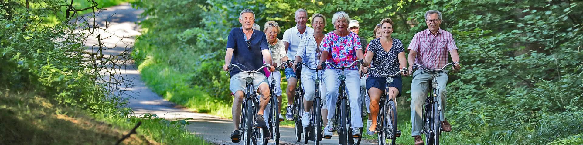 Eine Gruppe macht eine Fahrradtour durch einen Wald