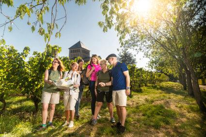 Wanderung durch die Weinberge in Rüdesheim