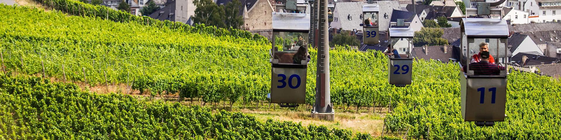 Seilbahnfahrt über die Weinberge in Rüdesheim