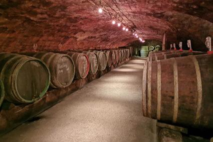 Weinkeller mit Weinfässern auf einem Weingut in Trier