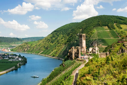 Burg Metternich an der Mosel in Trier